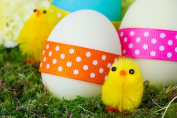 easter-chicks-and-eggs